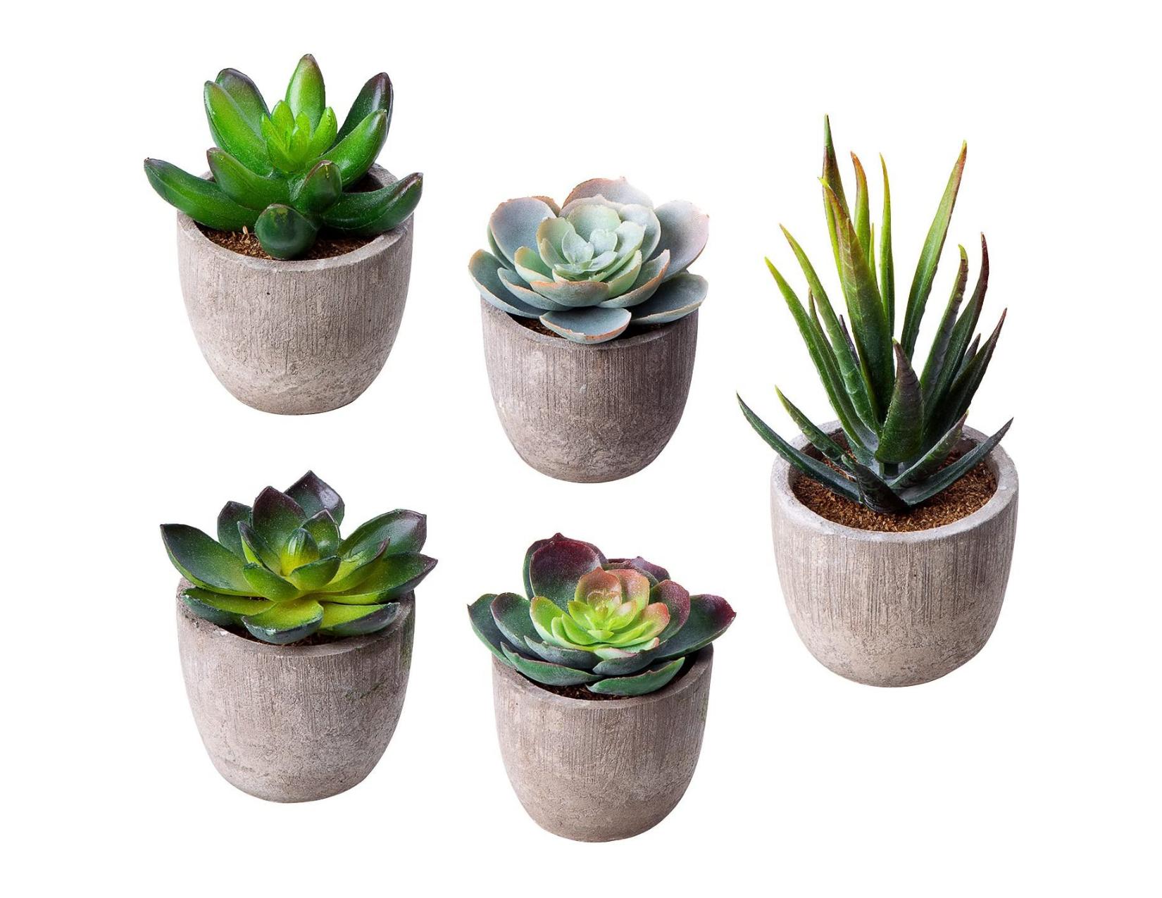 Faux Mini Succulent Planters